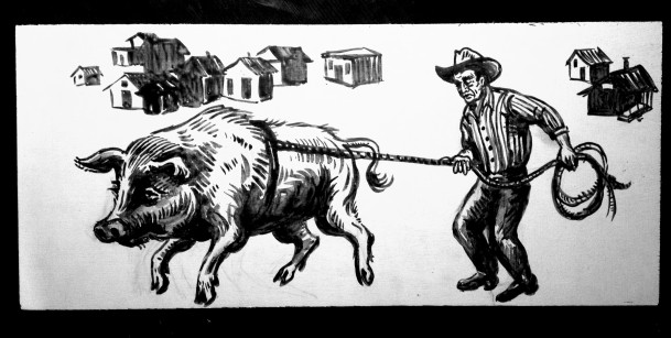 runaway hog