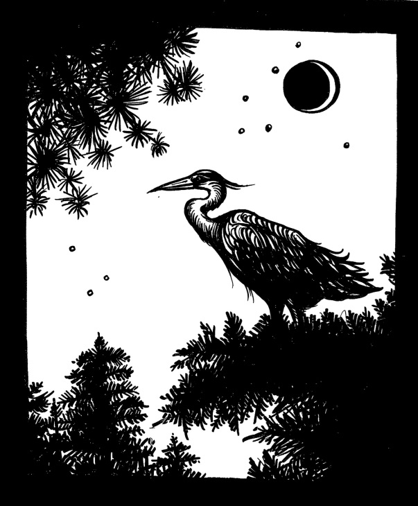Blue heron for lyme.jpg
